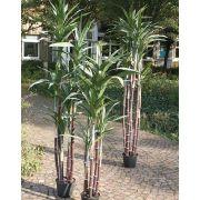 Kunstgras Zuckerrohr ENYO, grün, 210cm