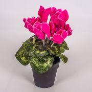Kunstblume Alpenveilchen HEIDI im Dekotopf, pink, 25cm, Ø5-8cm