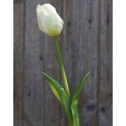Künstliche Tulpe LONA, weiß-grün, 45cm, Ø4cm