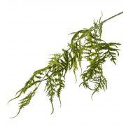 Kunst Asparagus plumosus Zweig CHRISTIAN, grün, 85cm