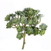 Kunst Echeveria BLAIR auf Steckstab, grün, 20cm, Ø10cm