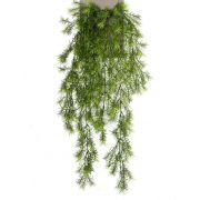Kunst Asparagus sprengeri Hänger COLE, Steckstab, 75cm