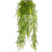 Kunst Asparagus plumosus Hänger COLE, Steckstab, 80cm