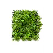 Kunst Schefflera Gras Matte ENZIO, crossdoor, grün, 50x50cm