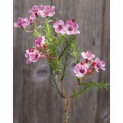 Kunst Wachsblume AISHA, pink, 25cm, Ø1-1,5cm