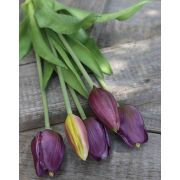 Künstlicher Tulpenstrauß LONA, violett-grün, 35cm, Ø15cm