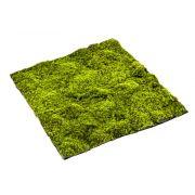 Kunst Torfmoos Matte Vlies FERMIN, grün, 100x100cm